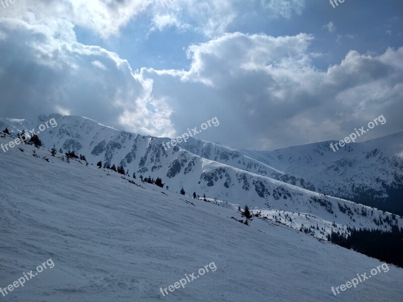 Winter Snow Cold Skiing Sport